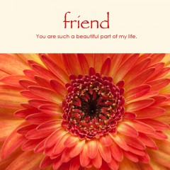 Friend e-card: You are such a beautiful part of my life — $1.95