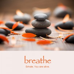 Breathe e-card: Exhale. You are alive. — $1.95