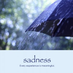 Sadness e-card: Every experience is meaningful — $1.95