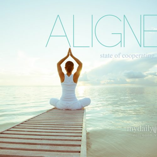 Aligned – state of cooperating, agreement