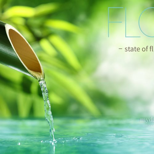 Flow – state of fluidity