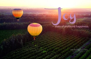 Joy – state of profound happiness