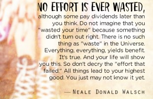 No Effort Is Ever Wasted by Neale Donald Walsch